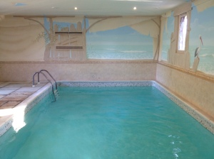 Swimming pool and surround