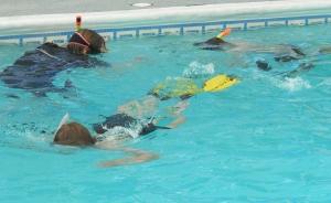 snorkelling 2015 4